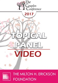 CC17 Topical Panel 02 - Couples vs. Individual Therapy - What Works/What Doesn't - Ellyn Bader, PhD, Sue Diamond Potts, MA, RCC, and Janis Abrahms Spring, PhD, ABPP