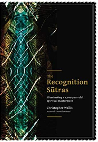 Christopher Wallis - The Recognition Sutras Illuminating