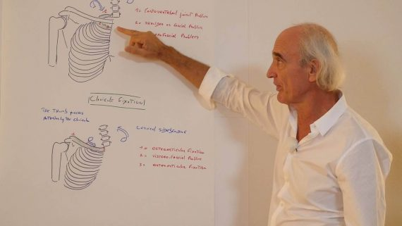 """It evaluates and treats the dynamics of motion and suspension in relation to organs, membranes, fascia, and ligaments. Jean-Pierre Barral – Advanced Visceral Manipulation – Thorax     Visceral Manipulation is a manual therapy developed by Jean-Pierre Barral, DO, MRO(F) that assists functional and structural imbalances throughout the body including musculoskeletal, vascular, nervous, urogenital, respiratory, digestive and lymphatic dysfunction. It evaluates and treats the dynamics of motion and suspension in relation to organs, membranes, fascia, and ligaments. VM increases proprioceptive communication within the body, thereby revitalizing a person and relieving symptoms of pain, dysfunction, and poor posture. This DVD shows detailed anatomical explanations and 13 Visceral Manipulation treatment demonstrations for working with the following organs in relation to the thorax: The heart The lungs The bronchi Readmore about: Jean-Pierre Barral - Advanced Visceral Manipulation - Thorax, barral advanced visceral manipulation thorax, jean-pierre barral advanced visceral, barral advanced visceral manipulation, advanced visceral manipulation thorax  Here's What You'll Get in Jean-Pierre Barral – Advanced Visceral Manipulation – Thorax  – Download Sample files """"Jean-Pierre Barral – Advanced Visceral Manipulation – Thorax""""  Course Requirement:Jean-Pierre Barral – Advanced Visceral Manipulation – Thorax Real Value:$12.0000 One time cost:USD  Frequently Asked Questions For """"Jean-Pierre Barral – Advanced Visceral Manipulation – Thorax"""" How to make payment for """"Jean-Pierre Barral – Advanced Visceral Manipulation – Thorax""""? Please add to cart on this page and go to checkout page.You can also add as many other products as you like and make a one-time payment. We accept several type ofStripepayments such as Visa, Mastercard, American Express, Discover, Diners Club, Google Pay, Apple Pay and JCB, payments from customers worldwide.Paypal& Bitcoin please contact us. We strongly recommend"""